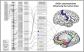 Appeared in Carless et al. (2011), Molecular Psychiatry. [http://dx.doi.org/10.1038/mp.2011.37]